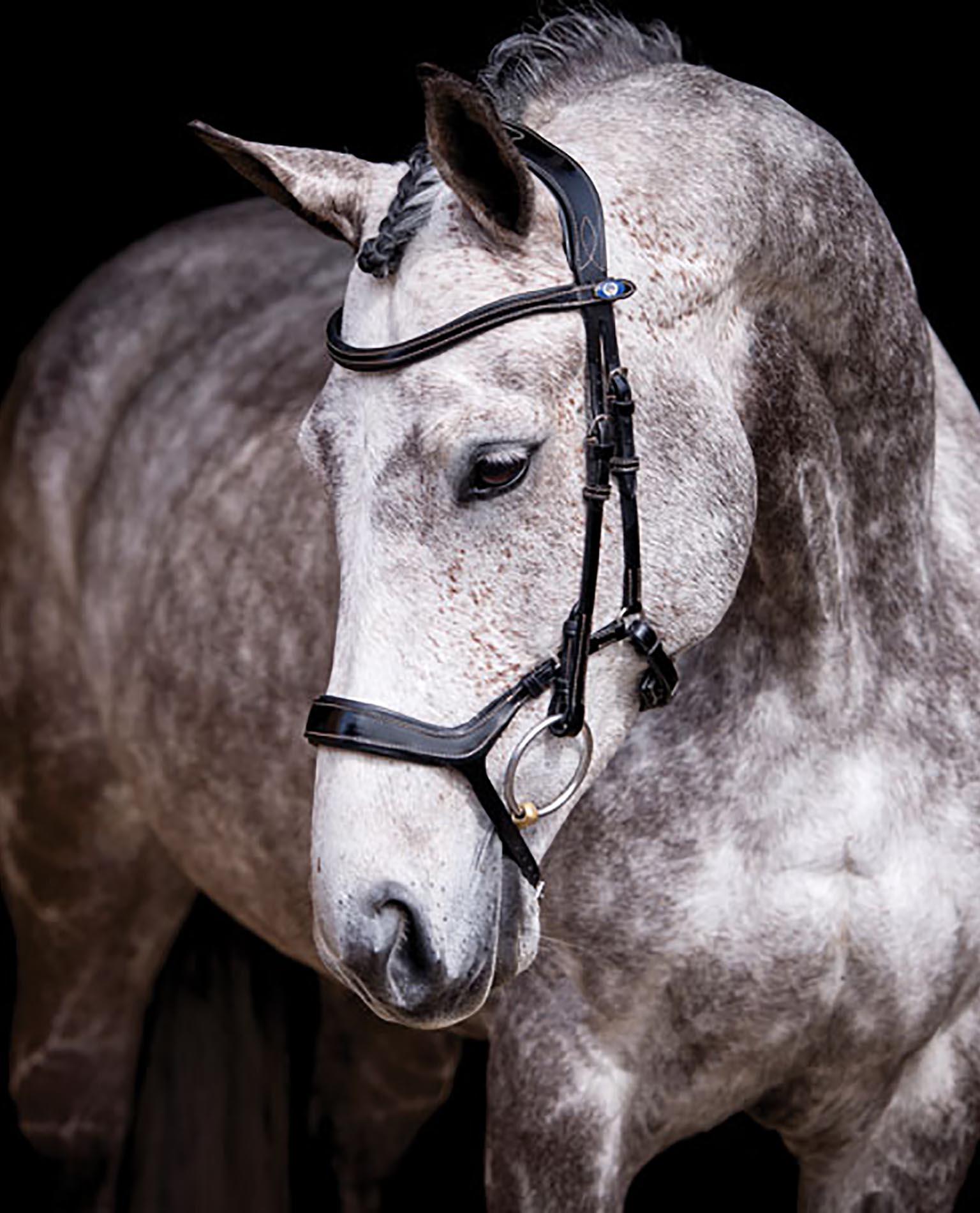 Hevosen Pään Merkit
