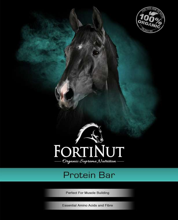 FortiNut Protein Bar